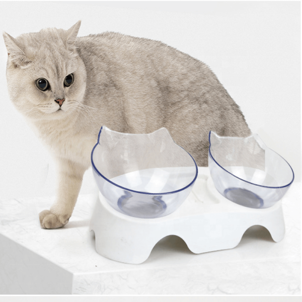 Elevated Feeding Water Pet Dog Cat Food Double Bowl Feeder 15 Degree Inclined Transparent (1)