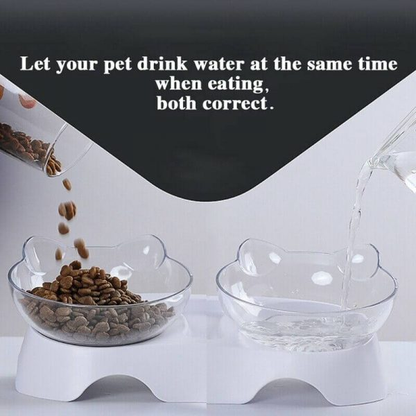 Elevated Feeding Water Pet Dog Cat Food Double Bowl Feeder 15 Degree Inclined Transparent (3)
