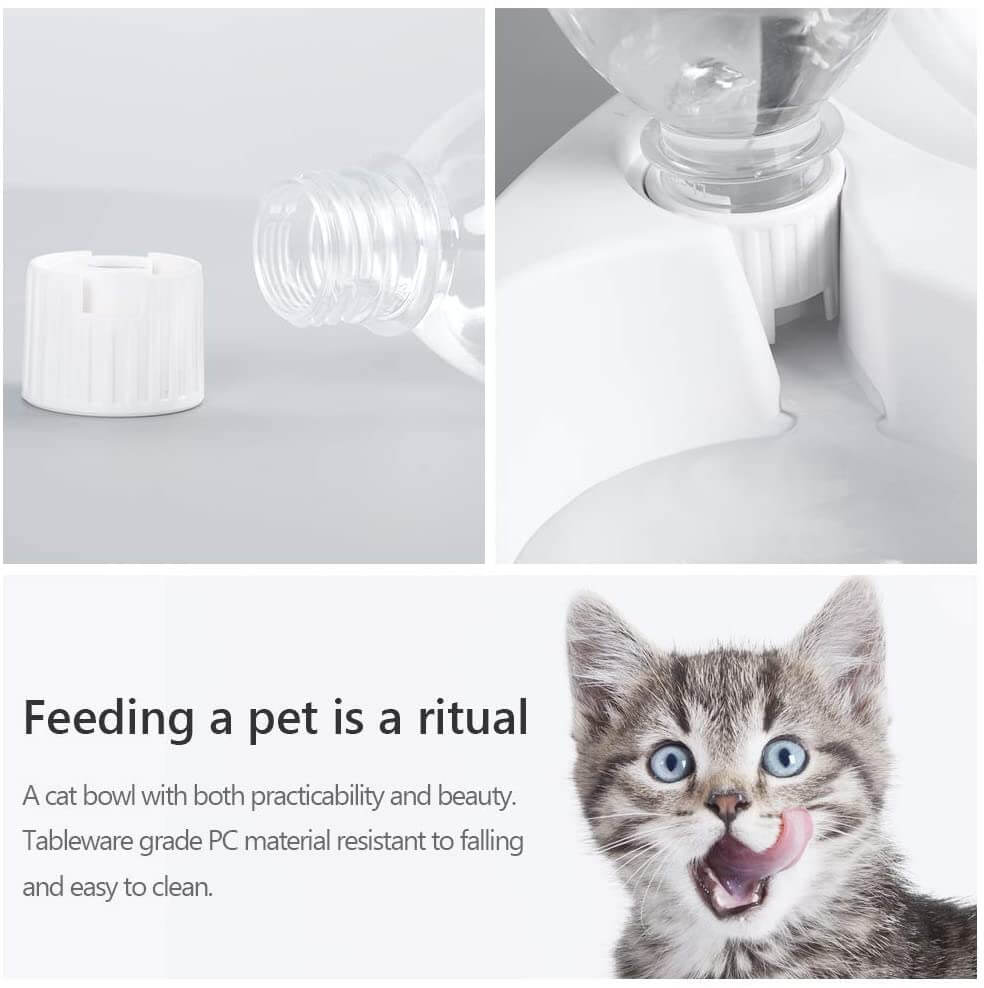Elevated Feeding Water Pet Dog Cat Food Double Bowl Feeder 15 Degree Inclined Transparent (9)