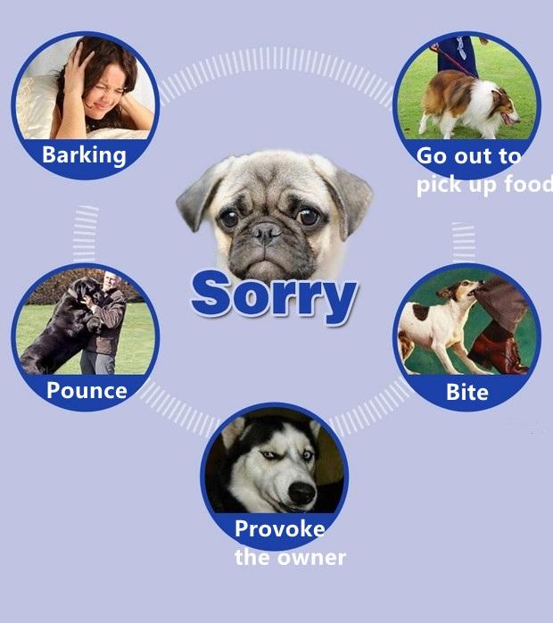 Pet Dog Training Collar Lcd Electric Shock Anti Bark Single Dog And Double Dog (21)