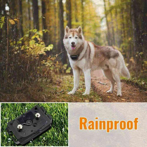 Pet Dog Training Collar Lcd Electric Shock Anti Bark Single Dog And Double Dog (26)