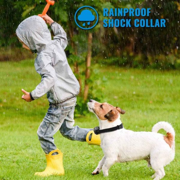 Pet Dog Training Collar Lcd Electric Shock Anti Bark Single Dog And Double Dog (7)