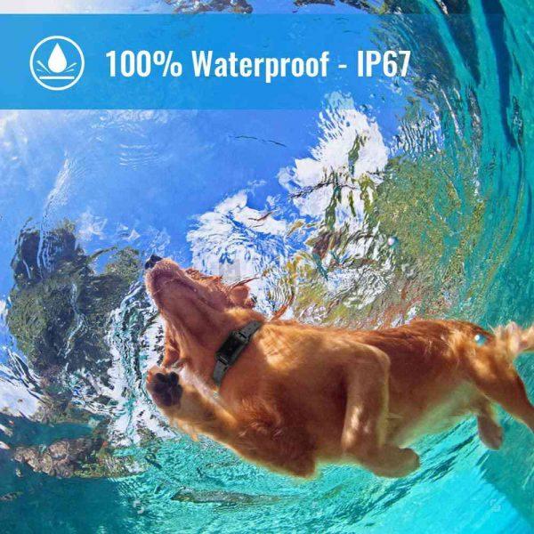 Pet Dog Training Collar Lcd Electric Shock Anti Bark Single Dog And Double Dog (8)