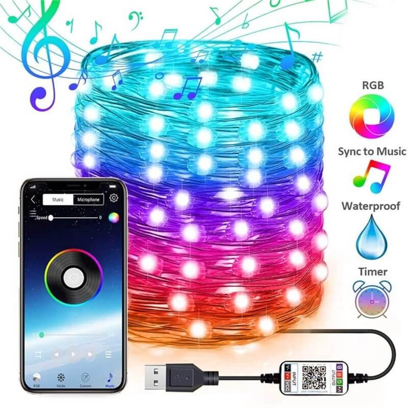 2m 5m 10m 20m Rgb Usb Led Copper Wire String Lights App Control Led String Lights (4)