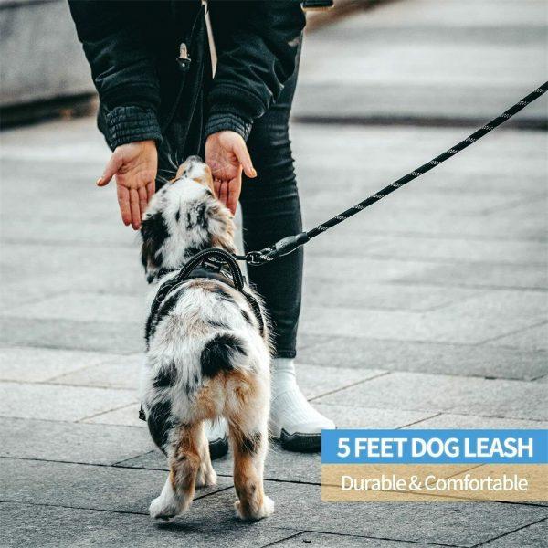 Dog Lead Rope Leash Large Leads Nylon Padded Soft Walking Reflective Braided5ft (12)