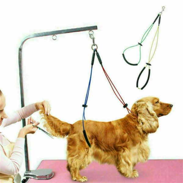 No Sit Pet Haunch Holder Dog Grooming Restraint Harness Leash Loops For Table Uk (2)
